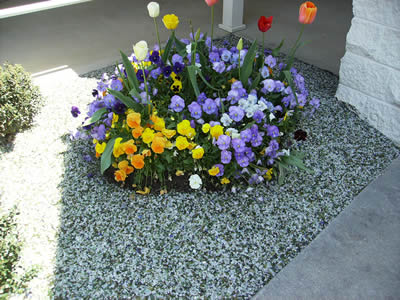 A sample of Andela Products' innovative use of crushed glass technology to assist in the beautification of the landscaping at Cormetech, Inc Environmental Technologies in Cleveland, Tenn.